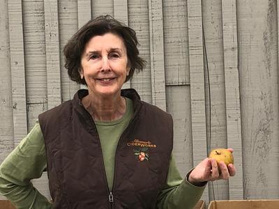 Owner Charlotte Shelton touts the taste of heritage apples.