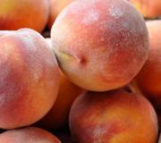 Tree-ripened peaches are hard to beat