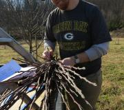 Thomas carefully labels some scion wood