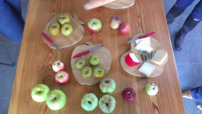Apples and cheese, yum!