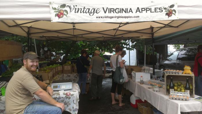 Selling apples and cider at the Charlottesville City Market